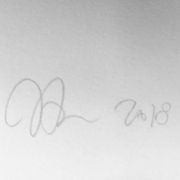 signature-john-armleder-print-them-all-mamco-geneve-art-print-no-stain-no-gain