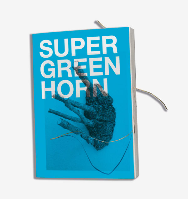 erik-steinbrecher-super-green-horn-limited-book-jrp-edition