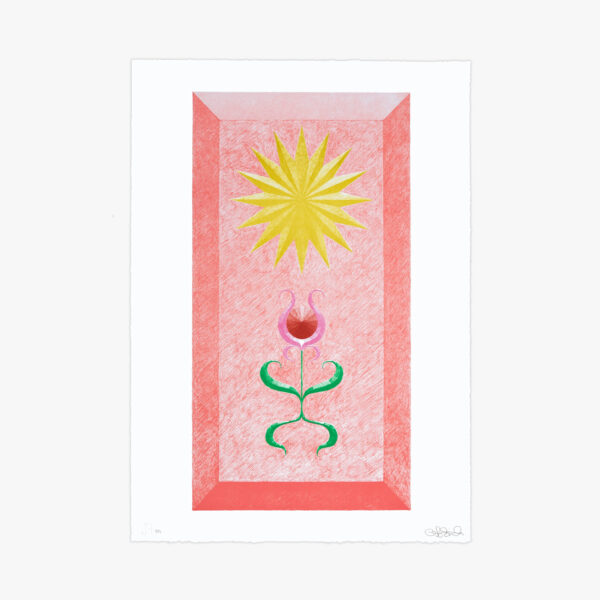 landscape-growth-panel-coral-greg-parma-smith-lithograph-jrp-editions-mamco-lithograph-art