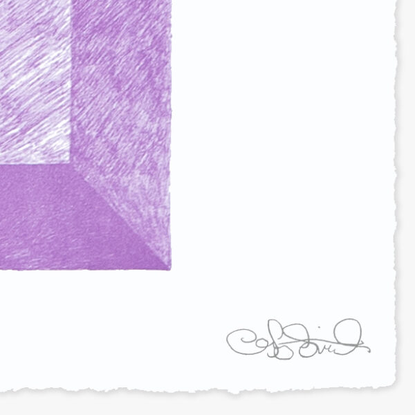 landscape-growth-panel-lavender-greg-parma-smith-jrp-editions-mamco-lithograph-signature-artist