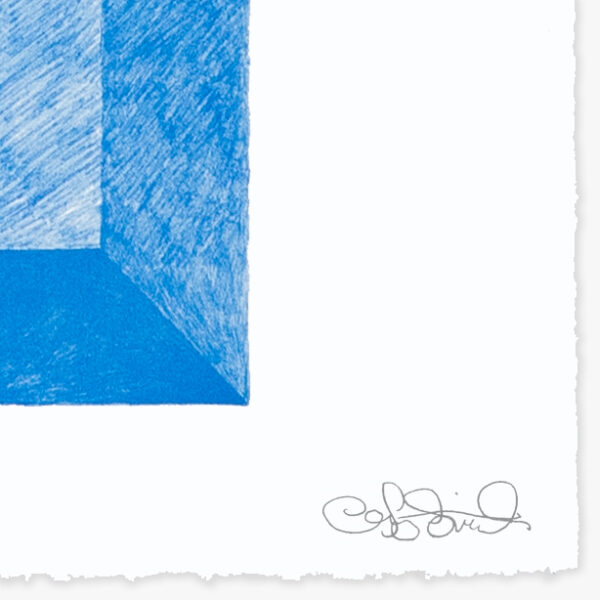 landscape-growth-panel-warm-celestial-blue-jrp-editions-mamco-signature-artist